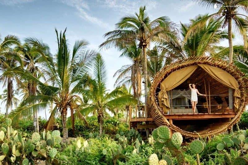 treehouse-mexico