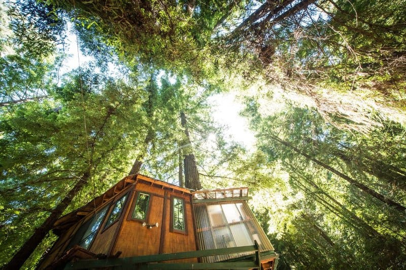 santa-cruz-mountains-treehouse